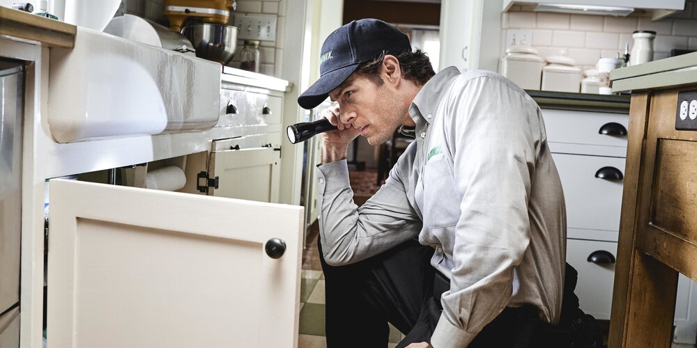 Home Pest Inspection